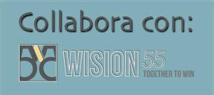 wision55 collaborare